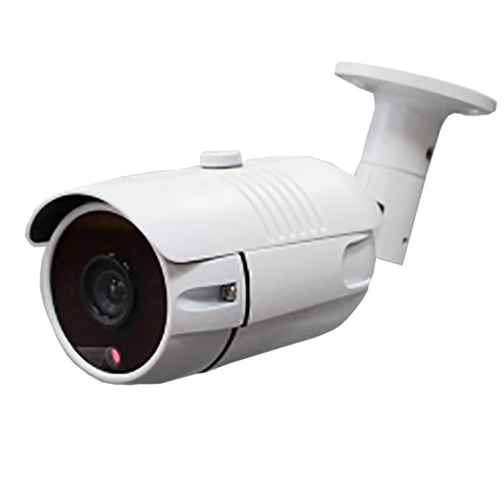Caméra de sécurité W73M 2MP
