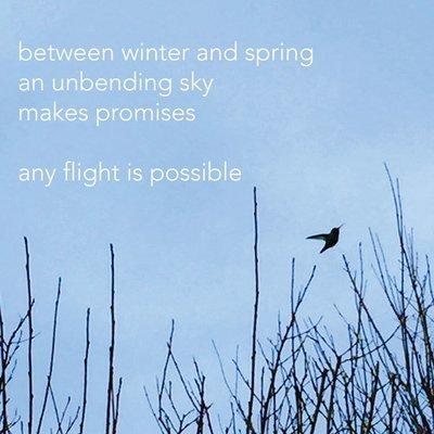 any flight