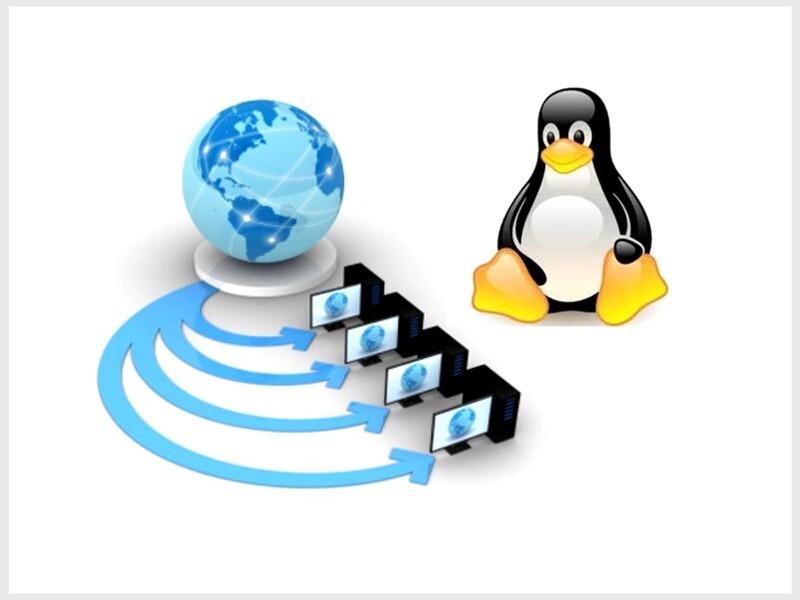 Web Hosting - Standard Business
