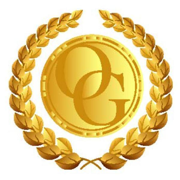 Bronze Professional Website
