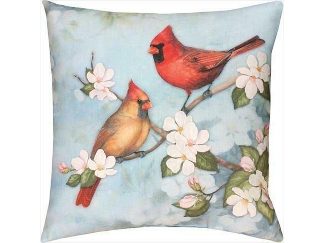 Spring Cardinal 18