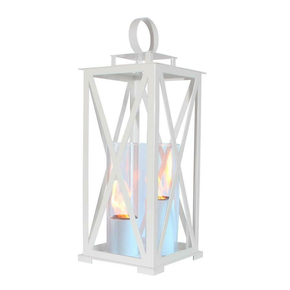 Kentucky White Lantern