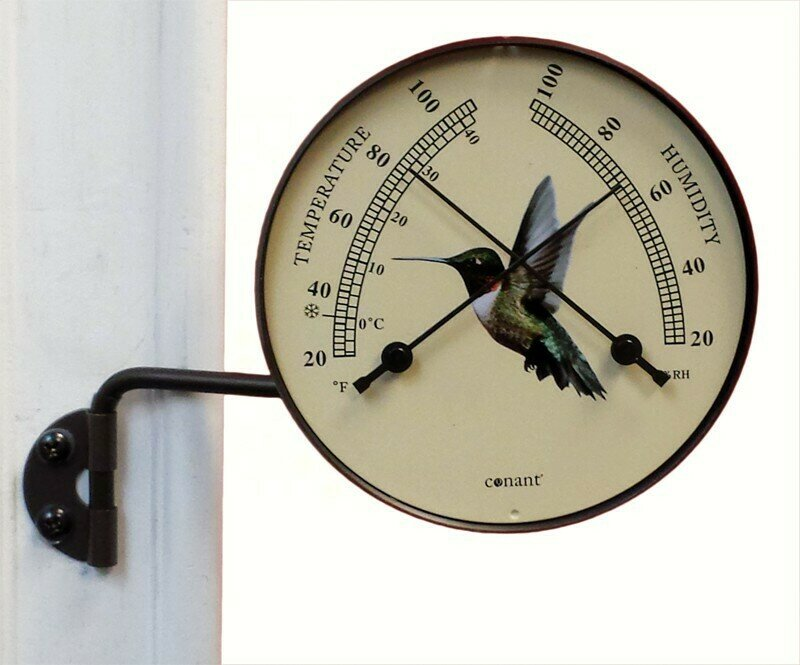 Bronze Patina Comfortmeter W/Hummingbird