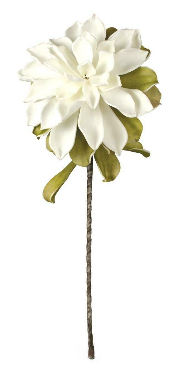 Botanica #533