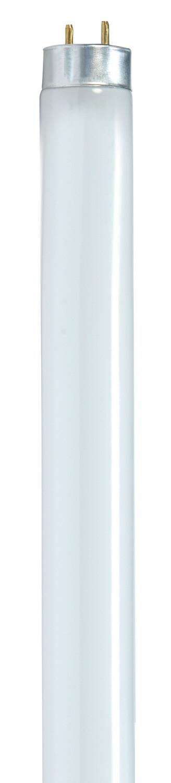 F32 T8/841 Fluorescent 4' Tube