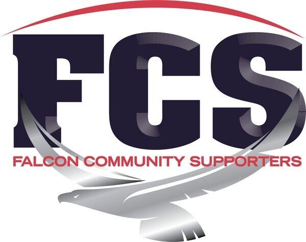 Falcon Store