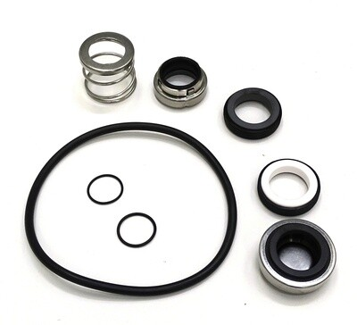 SEAL KIT for TECO PUMP - SW132