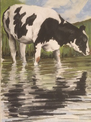 Cow Bathing - A4 Pastel Sketch