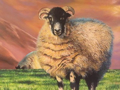 Langdale Sheep, Late Evening - Canvas (A3)