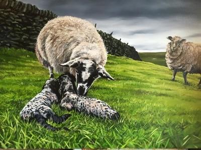Mel's Lambs - Canvas (A3)