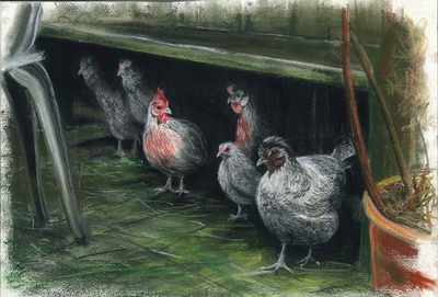 Mel's Chickens (A3)