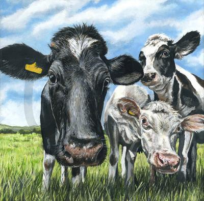 Suspicious Cows (A3)