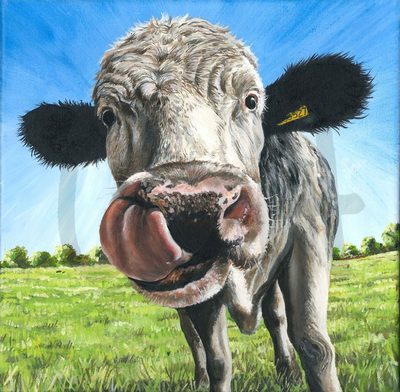 Happy Cow (A3)