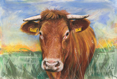 Brown Cow (A3)