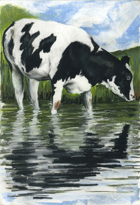 Black and White Cow Two (A3)