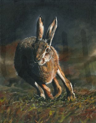 Hare in Motion (A3)