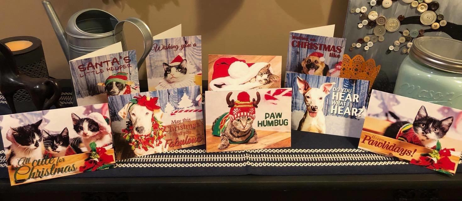 2018 Shelter Pet Christmas Cards - 10pk