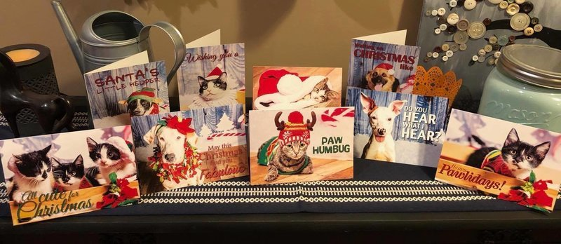 2018 Shelter Pet Christmas Cards - 10pk