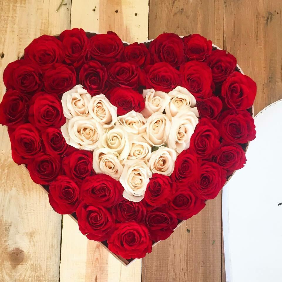 Calíope - Corazon de Rosas