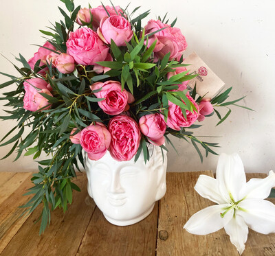 Gautama - Rosa Inglesa