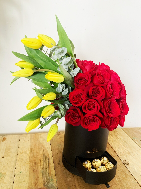 Febo - Tulipanes y Rosas