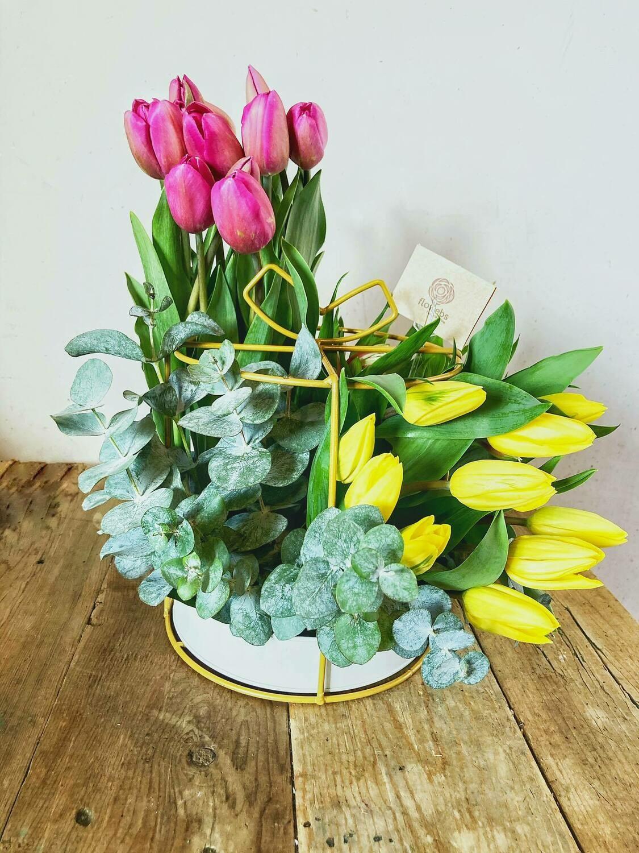 Acrópolis - Regalo de Tulipanes