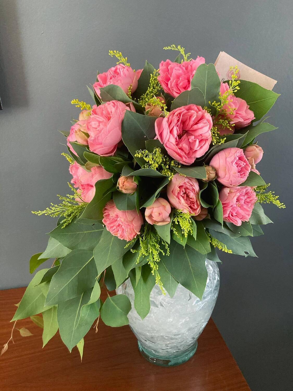 Buckingham - Rosa Inglesa