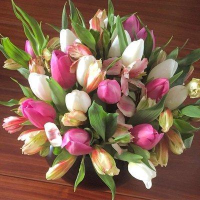 Aura - 20 tulipanes en esfera