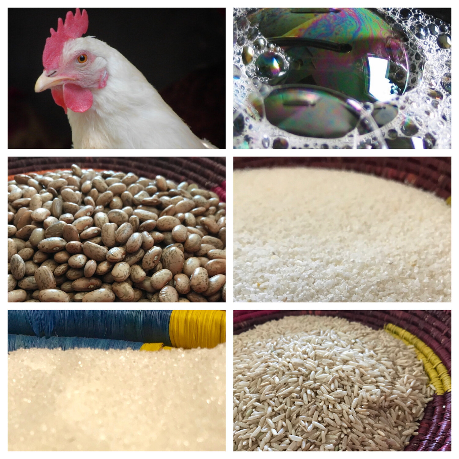 Donate an Entire Christmas Package for an Artisan Family - Rice, Beans, Sugar, Ground Corn, Soap, & a Live Chicken