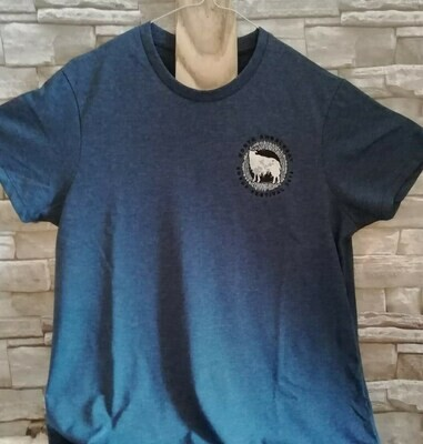 2019 Blue Festival T-Shirt - SMALL