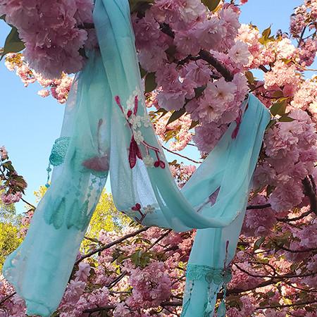 2019 Official Blue Sakura Blossom Scarf