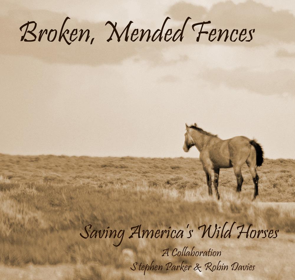 Broken Mended Fences - sepia postcard print