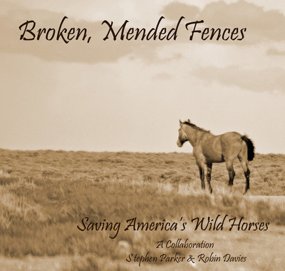 Broken Mended Fences - 8X10 sepia photographic print