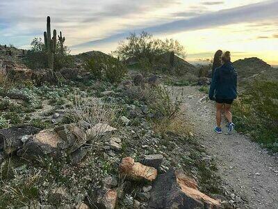 Arizona Running Camp