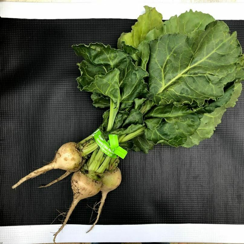 Baby White Beets - 24ct - $30