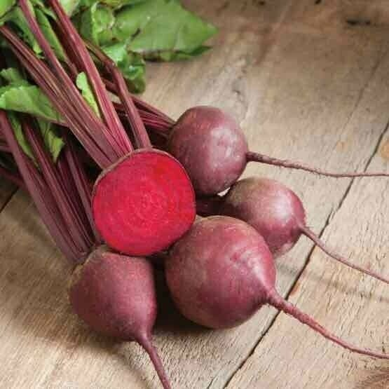 Baby Red Beets - 12bu - $15
