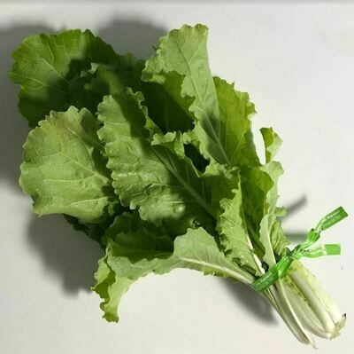Chinese Cabbage - 12ct - $15