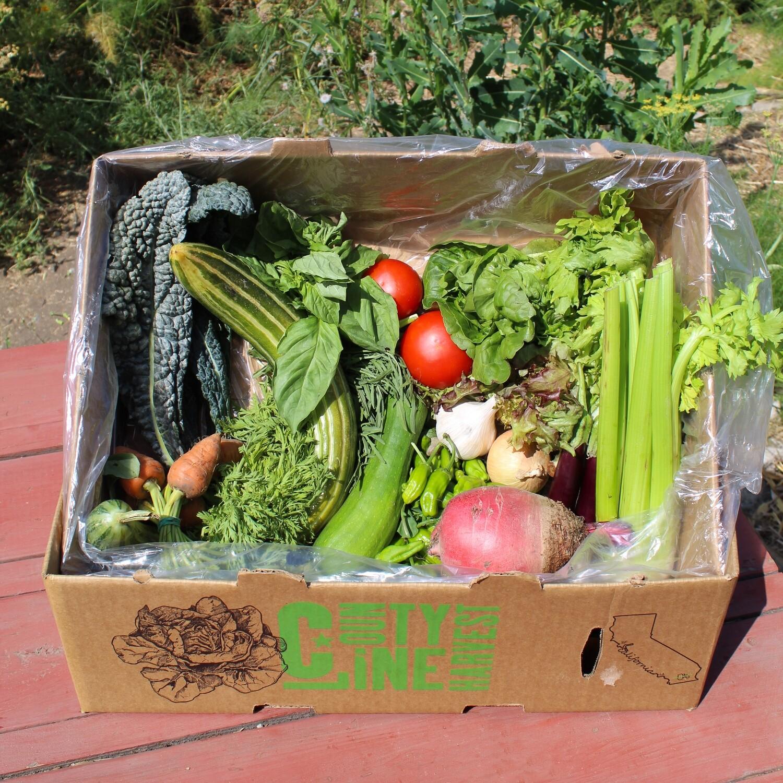 Summer Harvest Farm Box - Original - $25