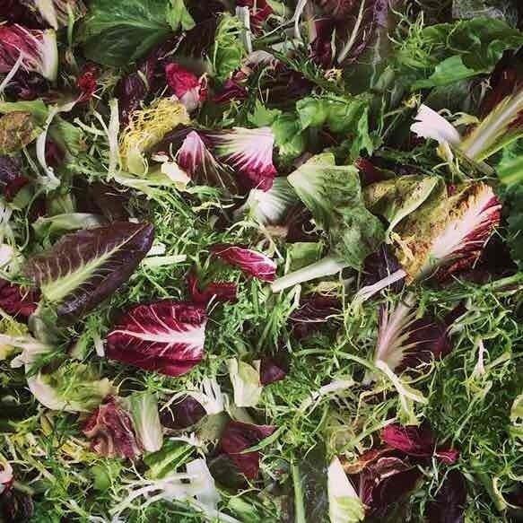 Italian Salad Mix - 3lbs - $15