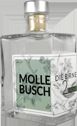 Mollebusch (Margarete Kantelberg)