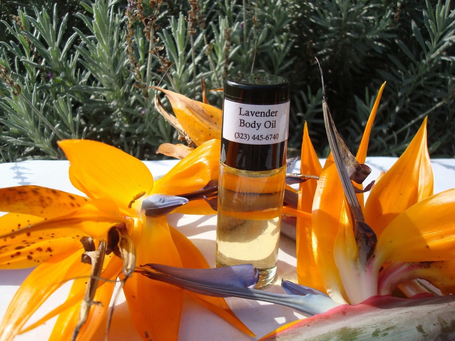 Men's Fragrance Oil