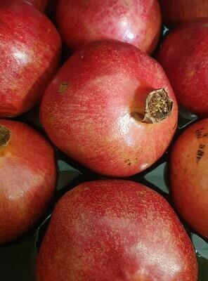 Pomegranate - Imported USA