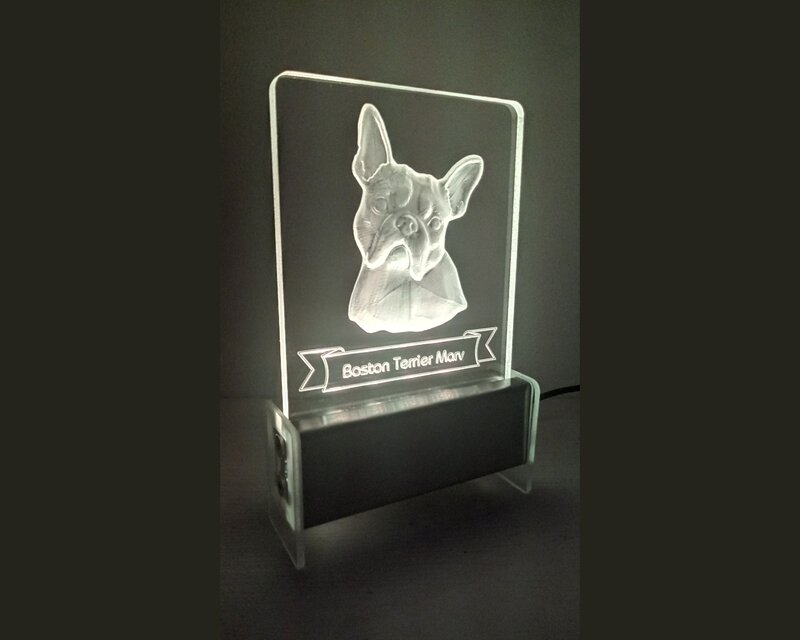 Boston Terrier Dog QT 3D Light