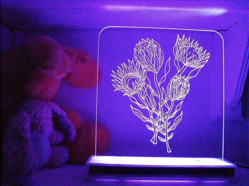 South African Protea Designer Light