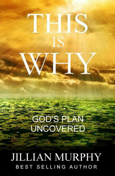 This is WHY: God's Plan Uncovered