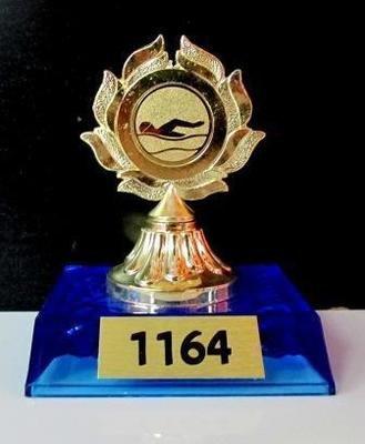 דגם 1164 מגן מתכת צבע זהב על בסיס פלסטיק עם סמל ענף/לוגו  גובה 10 ס