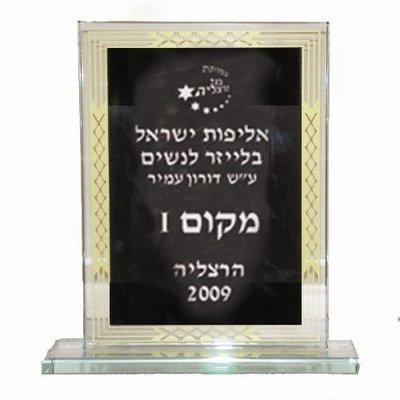 דגם 5268 מגן זכוכית מהודר 19*21 ס