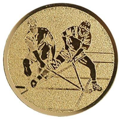 עיצוב מוטבע הוקי