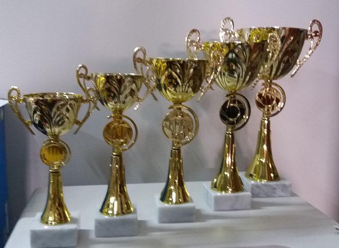 """דגם 1807 גביע מתכת צבע זהב ידיות ומקום לסמל גובה 24/27/30/33/36 ס""""מ מחיר החל מ"""