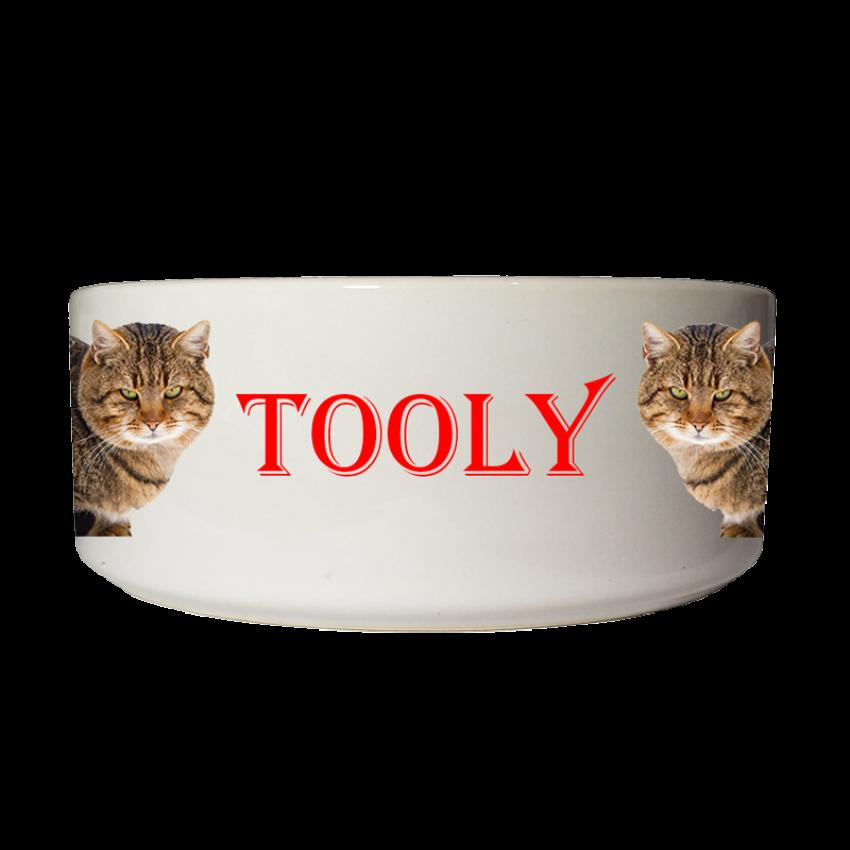 קערת אוכל אישית לחתול - שתי תמונות